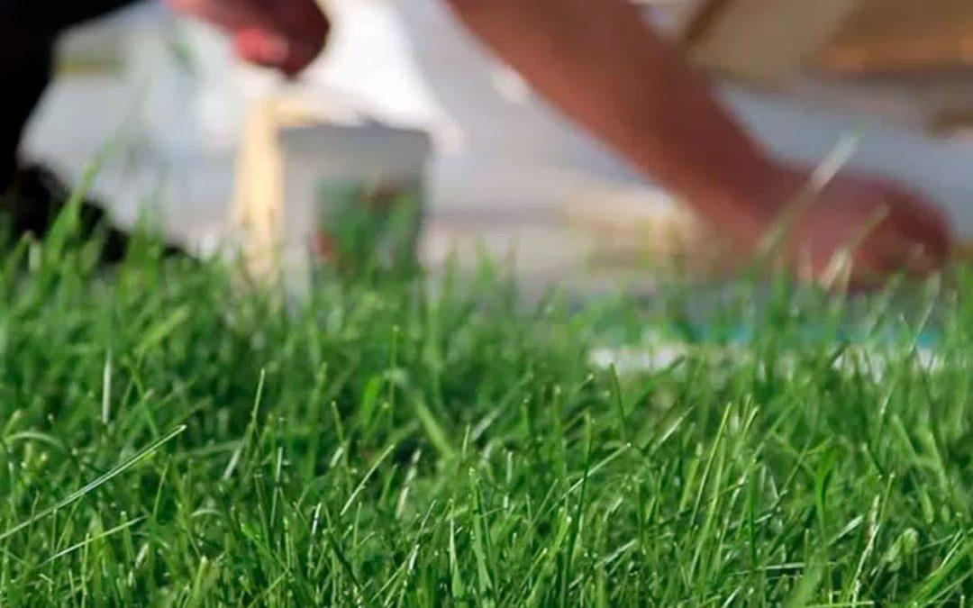 Como Limpiar el Grass Sintético